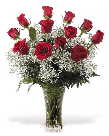Dozen roses arrangement