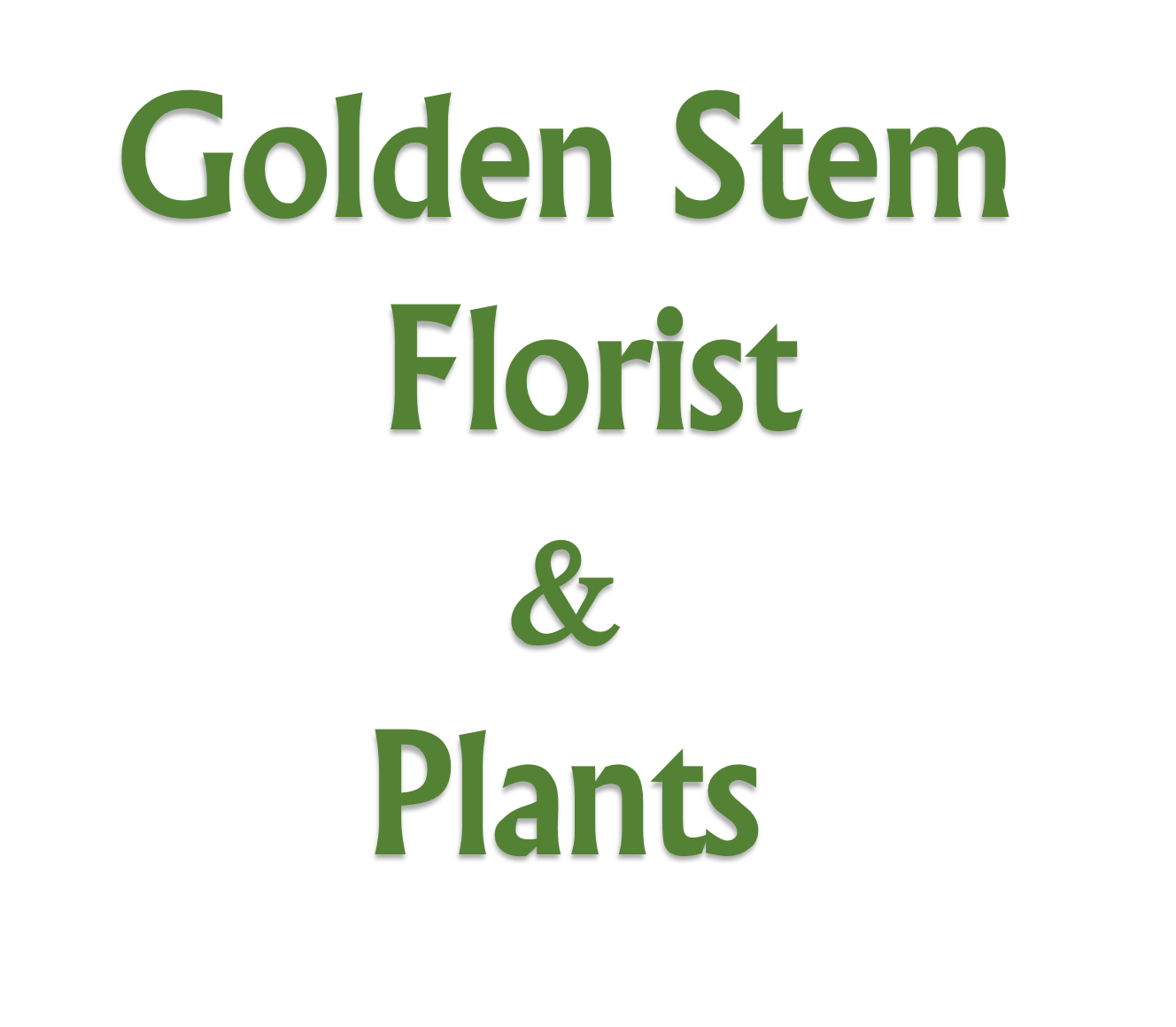Sandy springs florist flower delivery by golden stem florist plants golden stem florist plants mightylinksfo