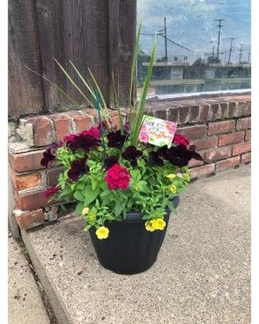 Outdoor Patio Pot with Keepsake Item Plant