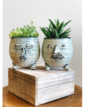 Mr. and Mrs. Clay Pot Plant