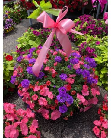 Outdoor Plant Flower Arrangement