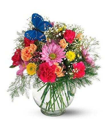 Butterfly & Blossoms Vase Flower Arrangement