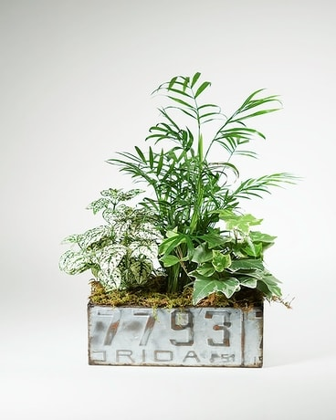 License Plate Garden Flower Arrangement