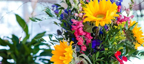 Flowers for your business delivered on-time, just the way you like them.
