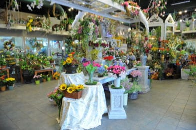 Stunning floral gallery of Fort Collins best local flower shop!