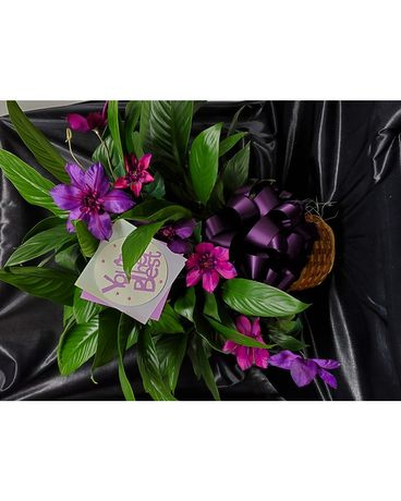 Exclusive Mothers Day Peace Lily Plant