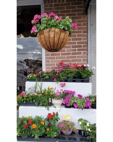 Assorted Hanging Baskets & Mixed Colorful Planters Custom product