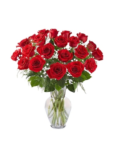 Ultimate Elegance: Two Dozen Long Stem Red Roses Flower Arrangement