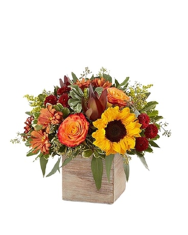 Oneco's Harvest Glow Flower Arrangement