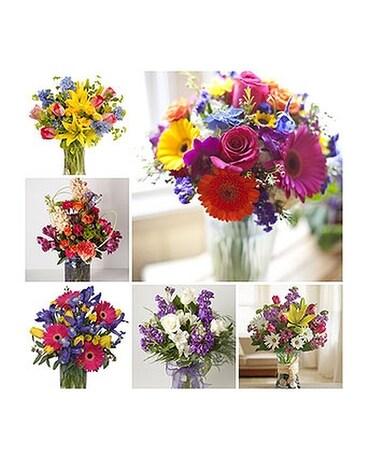 Designers choice spring mix in harrisonburg va blakemores designers choice spring mix mightylinksfo