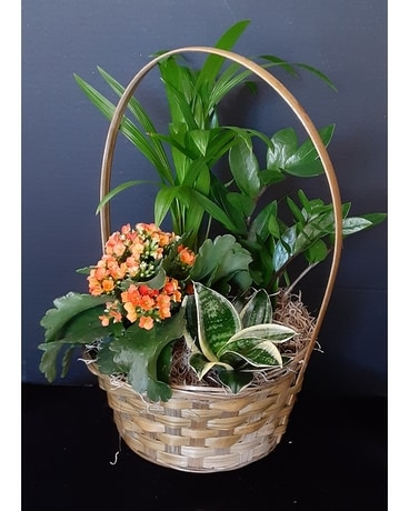 Small Blooming Basket
