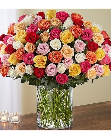 100 mixed colored roses Flower Arrangement