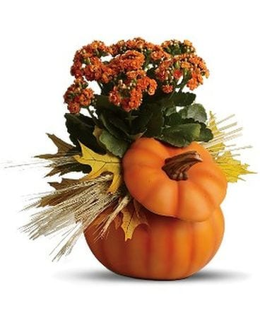 Harvest Pumpkin Bq Flower Arrangement
