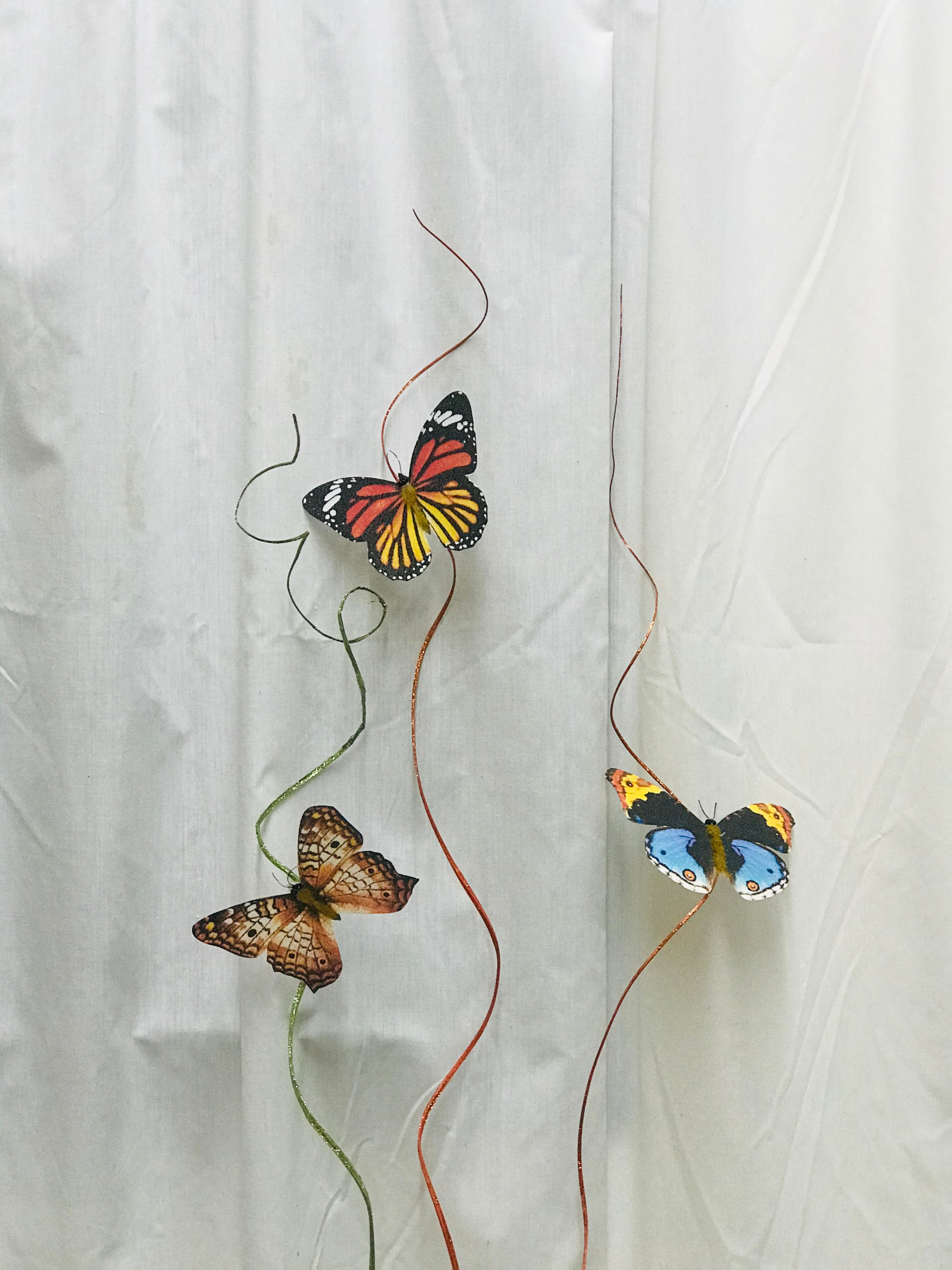 3 Butterflies on twig