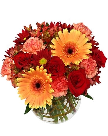 Hot and Spicy Deluxe Flower Arrangement