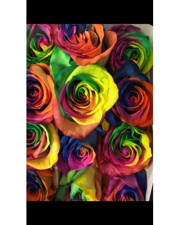 6 Rainbow roses Flower Arrangement