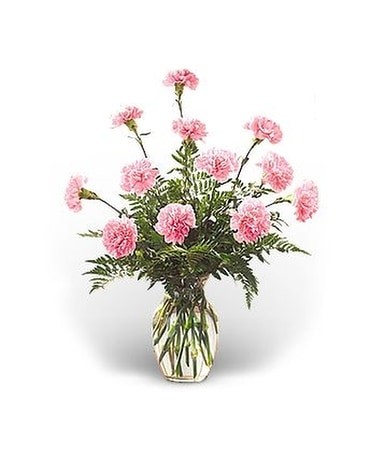 Dozen Pink Carnations Flower Arrangement