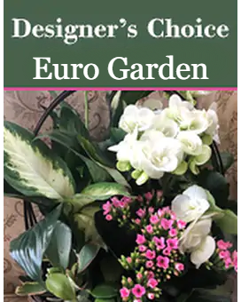 Green Plant Designer's Choice Flower Arrangement