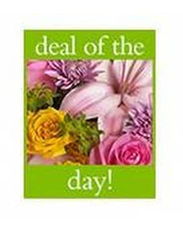Deal of the Day Bouquet - by Diana's Flower Shop Flower Arrangement