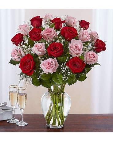 Ultimate Elegance Long Stem Pink & Red Roses – Two Flower Arrangement