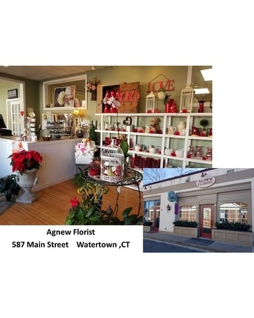 Agnew Florist Watertown Store Flower Arrangement