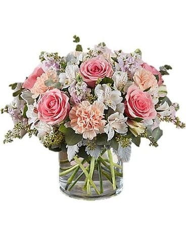 Blushing Blooms by Agnew Florist Flower Arrangement