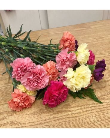 Mixed Carnations SPECIAL Flowers