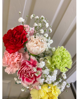 Carnations with Babies Breath Bouquet