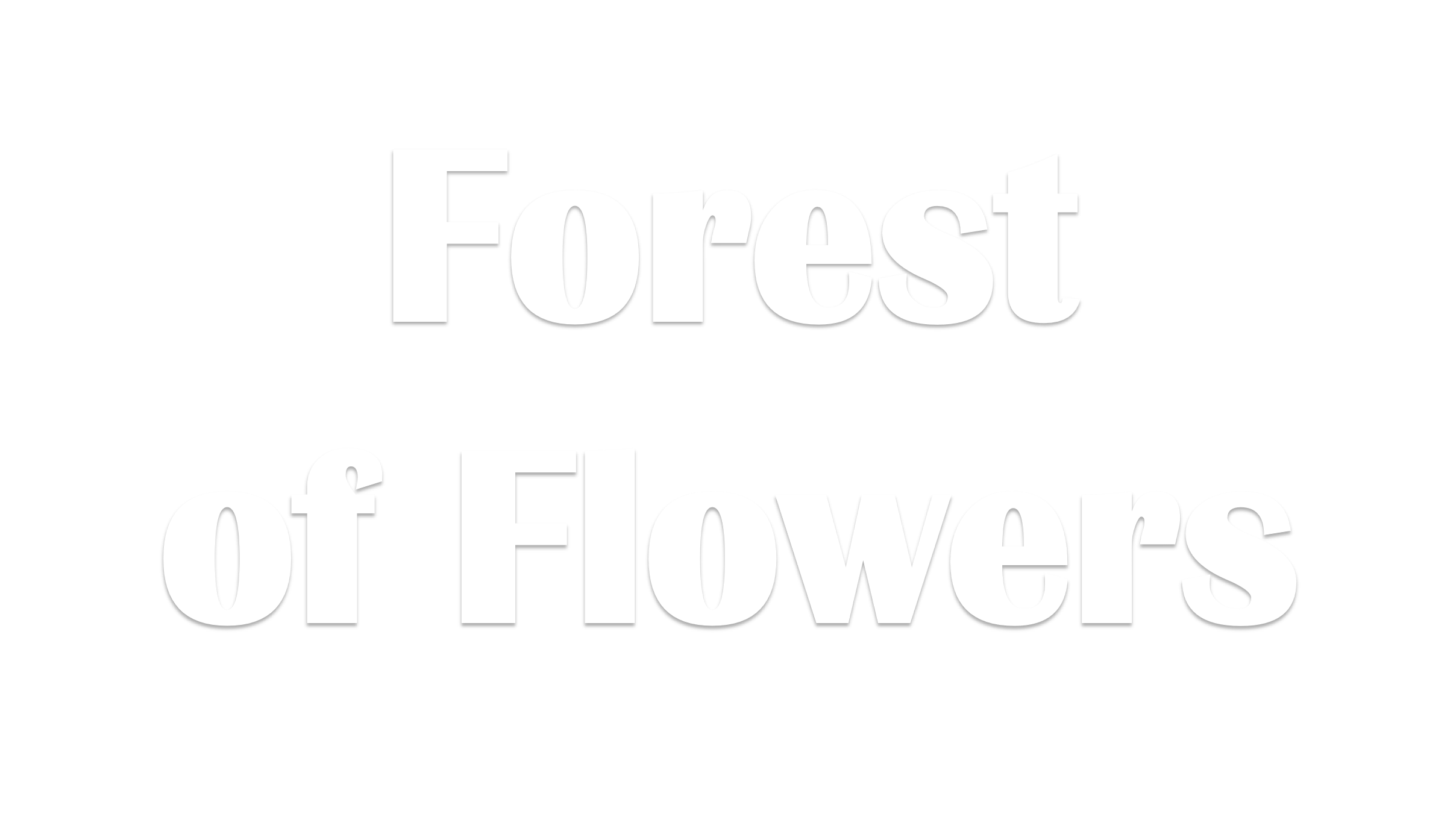 Kitchener Florist - Flower Delivery by Forest of Flowers