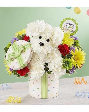 Party Pooch Flower Arrangement