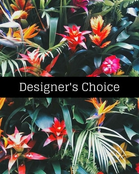Designers Choice Tropical Arra