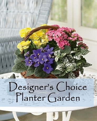 Designer's Choice Planter Garden.