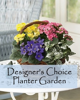 Designer's Choice Planter Garden. Flower Arrangement