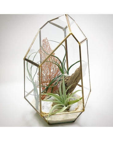 Deluxe Gold Geometric Terrarium Custom product