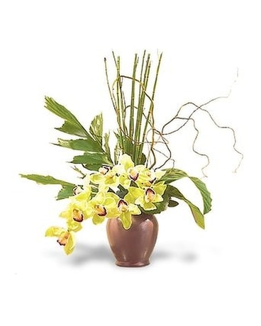 Glory of Green Orchids Flower Arrangement