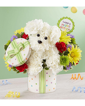 Birthday Flower Cake Bloomnet More Views 1800flowers Quick View Party Pooch From 1 800 Flowers
