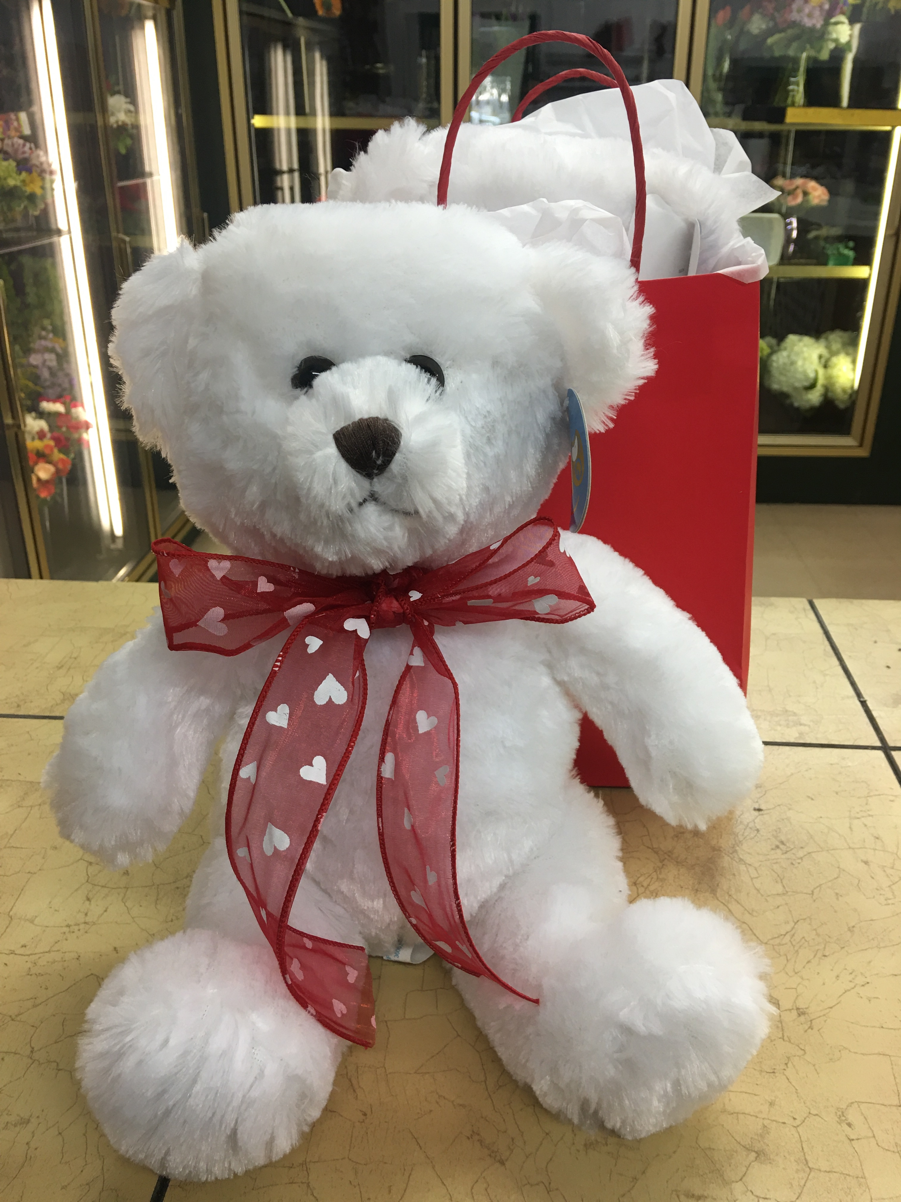 Plush Bear in Gift Bag