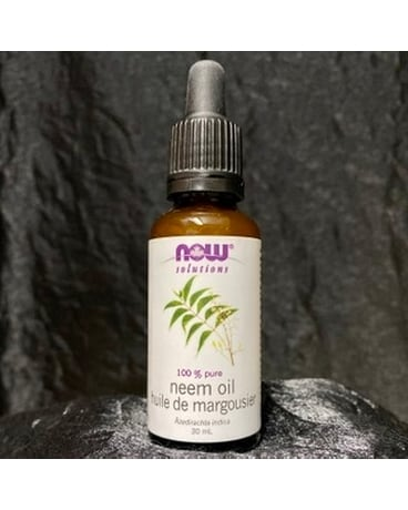 100% Pure Neem Oil Plant