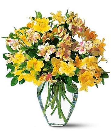 Bouquets by occasion delivery hot springs ar johnson floral co sparkling alstroemeria flower arrangement mightylinksfo