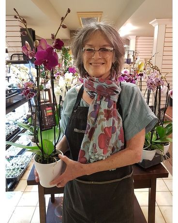 Mariannes Orchid Pick of the Day