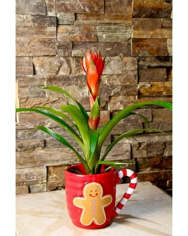Ginger Bread Mug Flower Arrangement