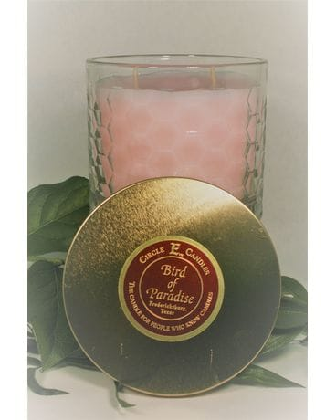 Circle E Bird of Paradise Candle small