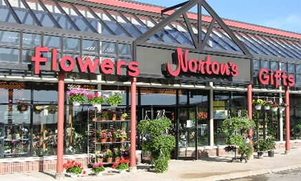 Norton's flower Shop