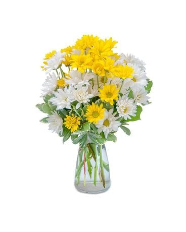 Hugs & Smiles Daisy Bouquet Flower Arrangement