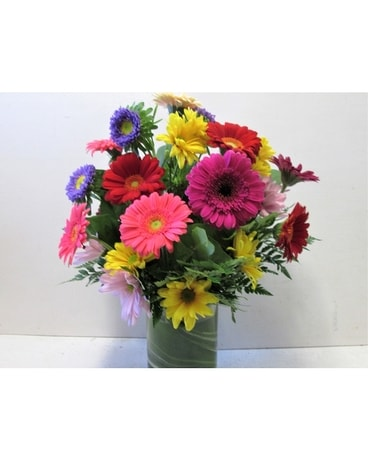 Daisy Delight (HS-717) Flower Arrangement