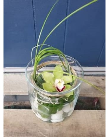 Single Orchid Flower Arrangement