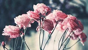 cheerful arrangement of seasonal flowers