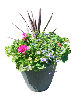 Mixed Spring Porch Pot 18 inch Flower Arrangement