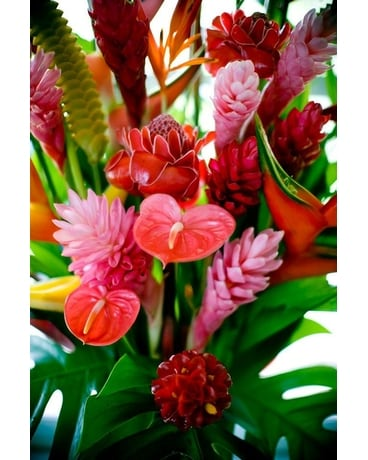 Custom Tropical Flower Arrangement