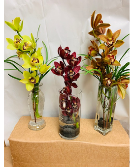 Cymbidium orchids vased